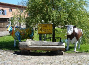 Lust zum shoppen? Zahlreiche Souvenirs und ein kleines Museum locken zum Kap Arkona.